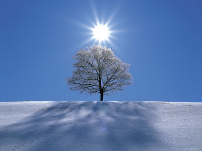 sun-shining-in-blue-sky_1.jpg