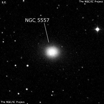 NGC5557