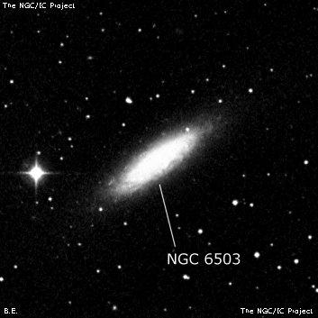 NGC6503
