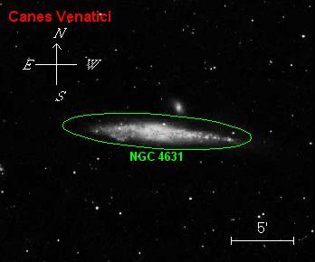 NGC4631