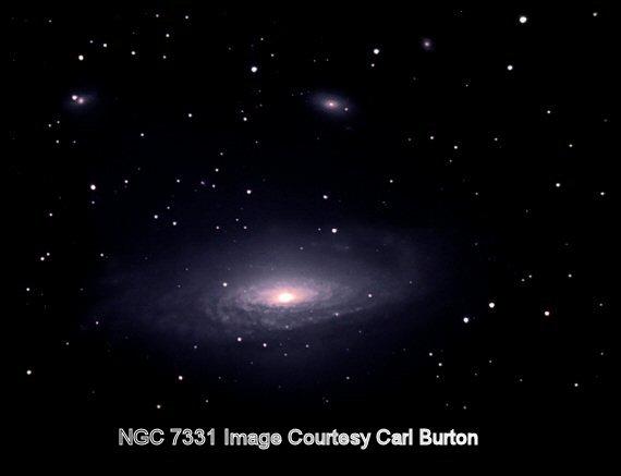 7331carl