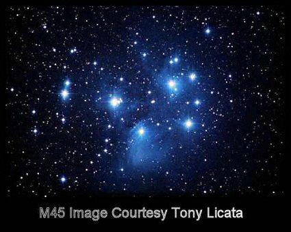 Tony Licata m45 sw2