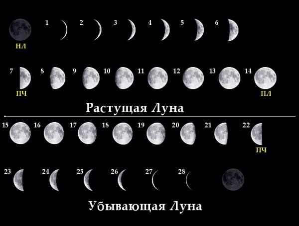 http://www.realsky.ru/images/stories/book/article/Moon/Moon_ph.jpg