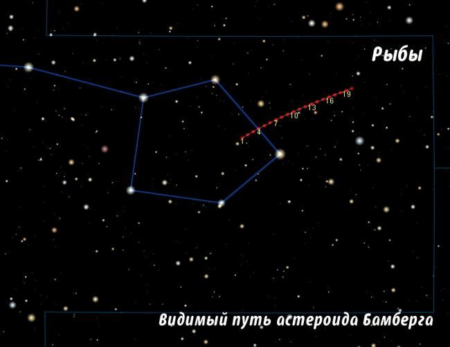 asteroid_Bamberga