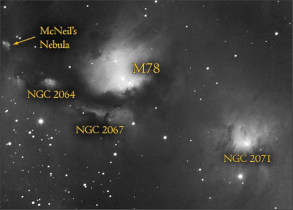 56bb13641eadd_M78nebulacomplex(Orion)_B.
