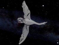 Cygnus_sm.jpg.bc1fb4301194f9ce1ad5b0d6c1
