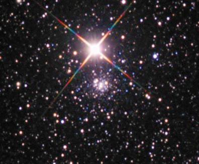 Palomar-9-Anthony-Ayiomamitis_ST.jpg.e98