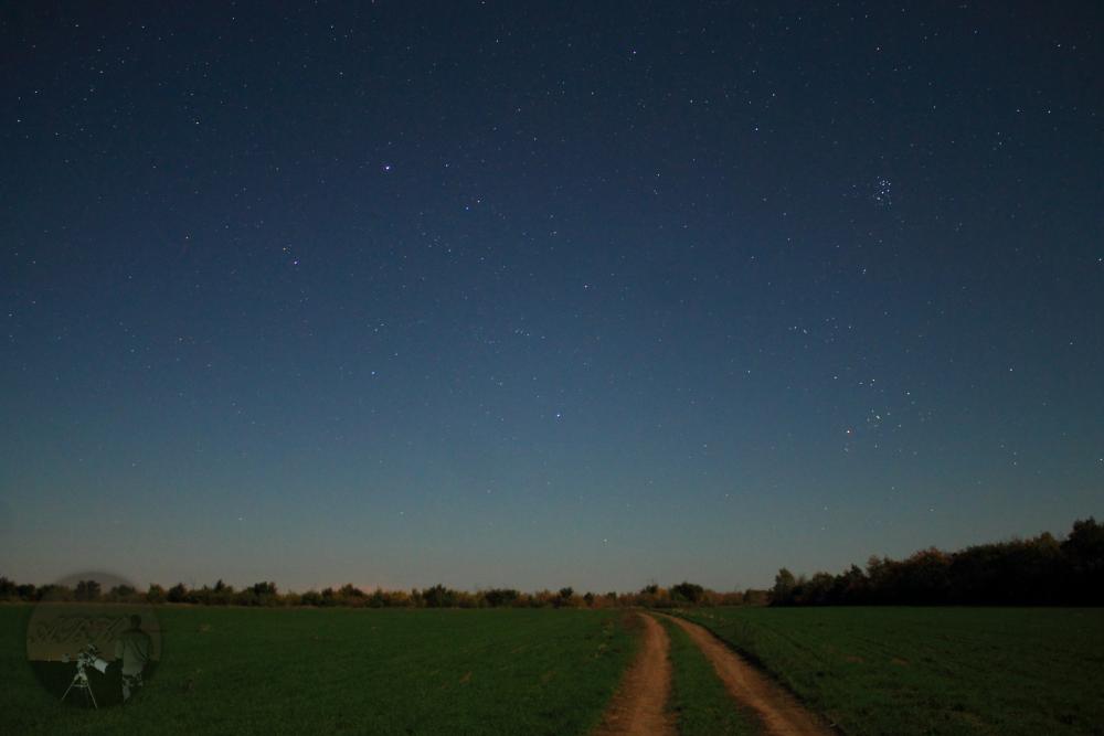 Ночной_пейзаж-1.png