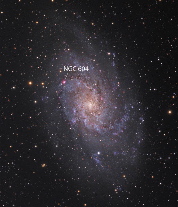 Hidden-M33-Hunter-Wilson_ST.jpg.2c3b27fe