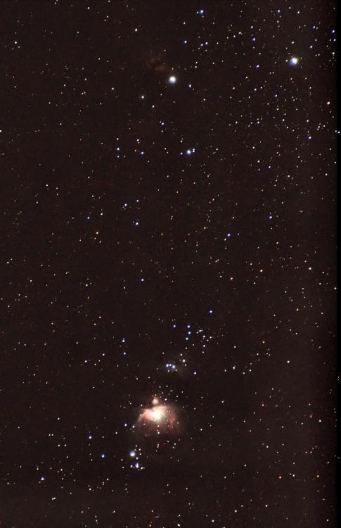 M42ab.thumb.jpg.478f0f849fbe9c1e58c3e8ee