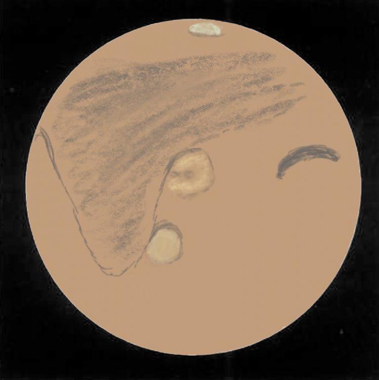 Mars_2.thumb.jpg.0eaa8baeaec413ec3f466e8
